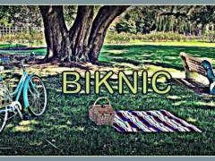 biknic